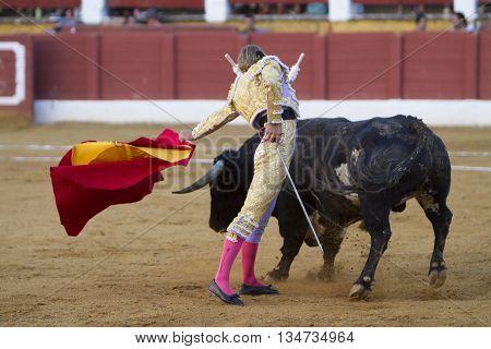 Andujar Spain - September 11 2010: The Spanish Bullfighter Ivan Garcia bullfighting with the crutch in the Bullring of Andujar Spain