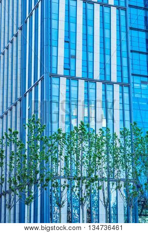 row of trees in front of glass building