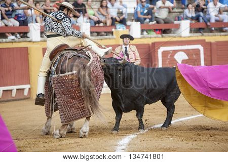 Jaen Spain - September 11 2009: Picador bullfighter lancer whose job it is to weaken bull's neck muscles in the bullring for Jaen Spain
