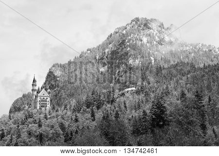 Castle In Mountais, Rocks And Forest Covered Fresh Snow