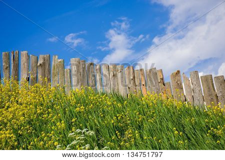 Palisade fence is a village full of flowers. Rural life outside the city. Landscape on bright flowers and a wooden hedge on a ranch.