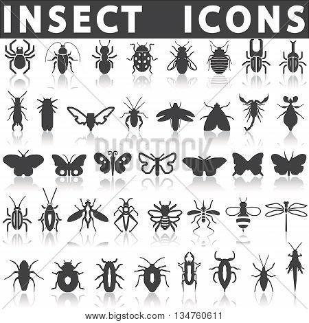 insect icons on a white background with a shadow