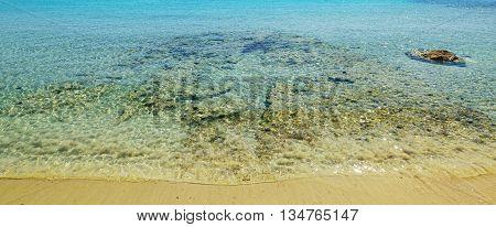 clear water in Le Bombarde beach under a shining sun Sardinia
