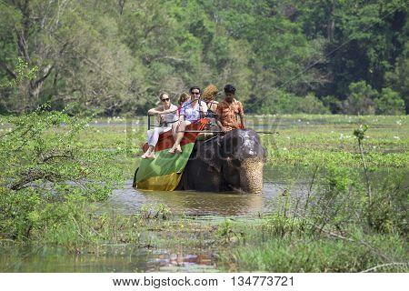 SIGIRIYA, SRI LANKA - MARCH 16, 2015: Elephant with a group of tourists makes its way through the overgrown lake. The tourist landmark of the Sri Lanka