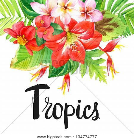 Beautiful bouquet with tropical flowers and plants on white background. Composition with amaryllis palm leaves and plumeria.