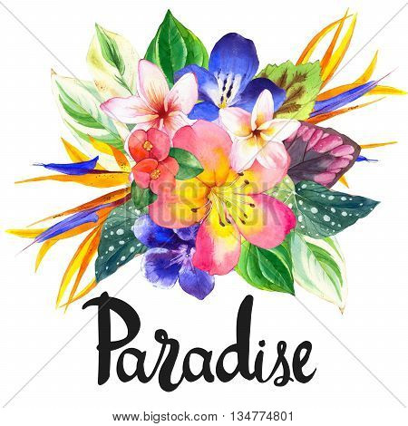 Beautiful bouquet with tropical flowers and plants on white background. Composition with begonia palm leaves plumeria and strelitzia.