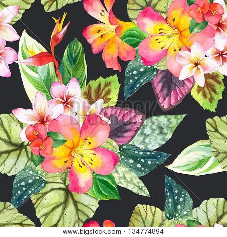 Beautiful pattern with tropical flowers and plants on black background. Composition with palm leaves plumeria strelitzia and begonia leaves.