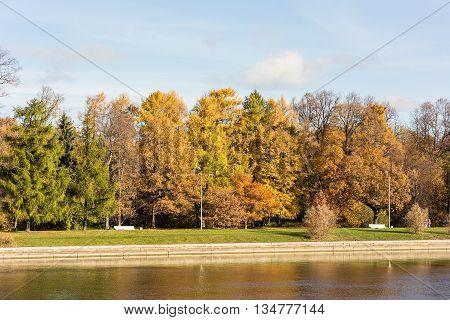 sunny promenade in autumn park Sankt-Peterburg Russia