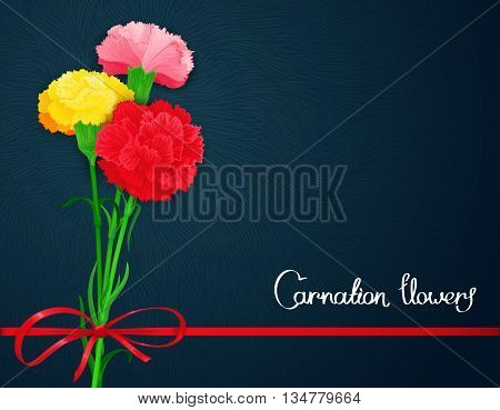 Floral template design with textured print and three multicolored flowers of carnations. Vector illustration. Stylized backdrop banner and other decoration