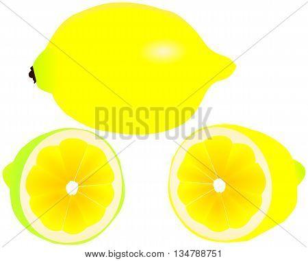 slicing lemon  ,lemon citron , tropical fruit ,