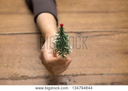 Woman's hand holding miniature christmas tree on wood background with copy space