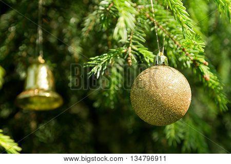 Golden Christmas tree ornament on the real Christmas tree