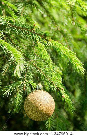 Golden Christmas tree ball on the green Christmas tree