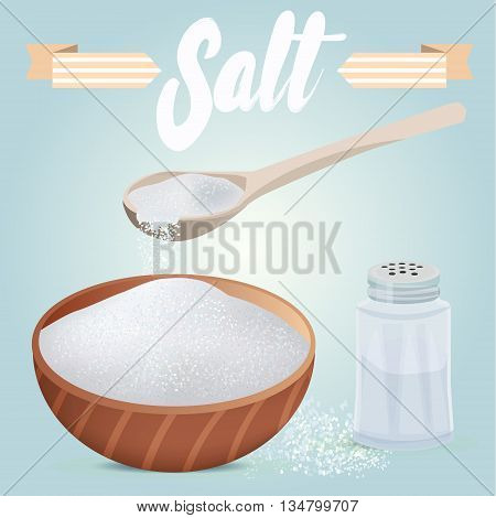 Set of vector salt shaker full wooden bowl and spoon