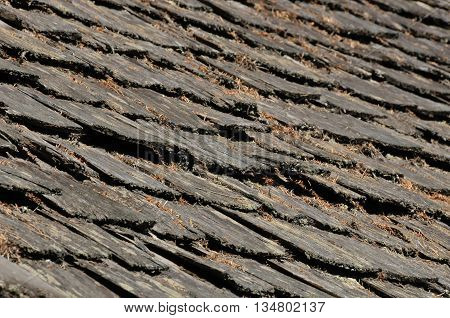 An old wooden single roof decaying in Seattle.