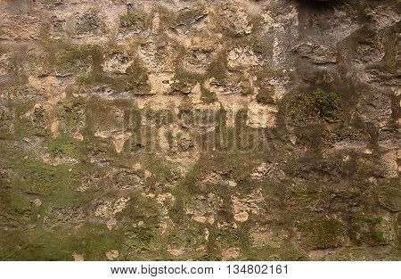 Closeup of stone wall masonry texture overgrown with moss