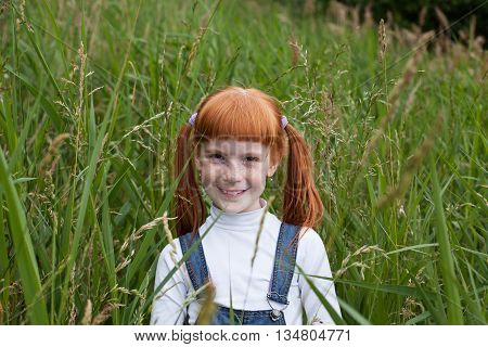 Little redhead girl with sparkling eyes and freckles in the tall grass