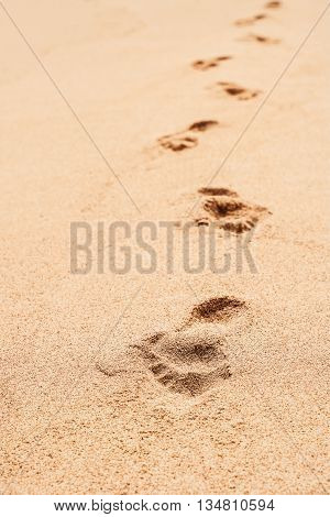 Footprints in the sand gradually fading into the distance on a lonesome beach.