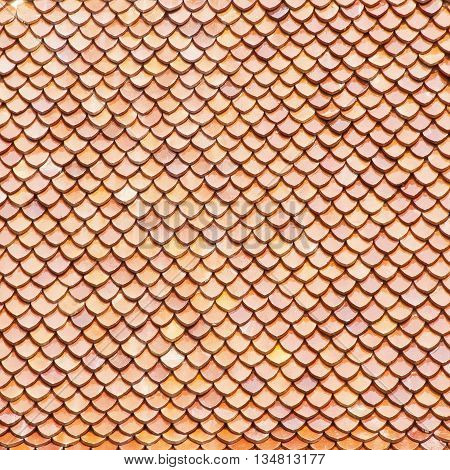 Roof tiles background. The tiled roof for background or texture
