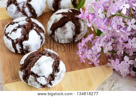 Chocolate Cakes In Powdered Sugar