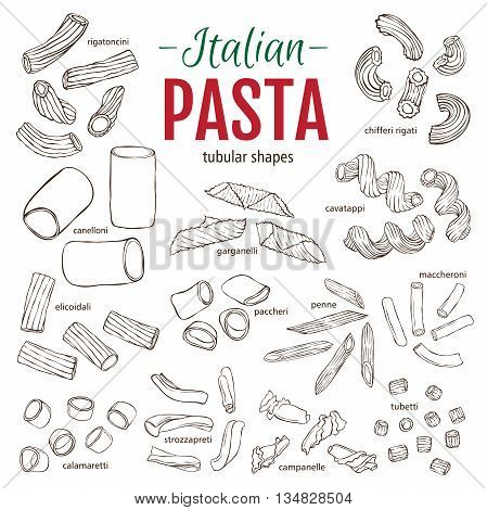 Set of hand drawn Italian pasta tubular shapes. Hand drawn vector illustration. Sketch style