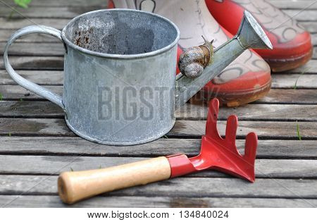 snail on a small watering can with red rake and boots for children
