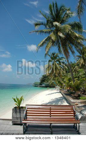 Beach Park1