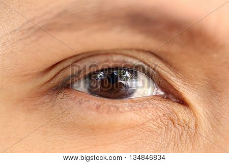 Macro Women's Eye in the near termclose up Photography concept of health and body.