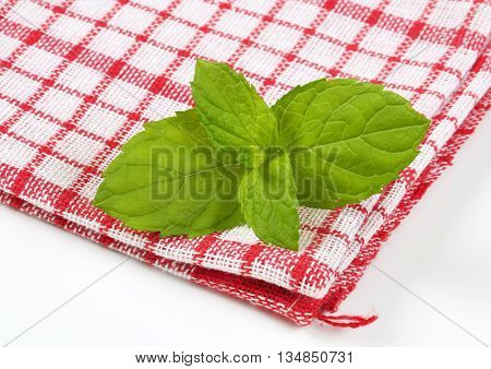 close up of lemon balm leaves on checkered dishtowel