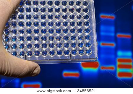 Well plate in the lab. Scientific research in the modern biological laboratory.