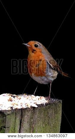 Abstract Watercolour Effect of a Robin,Christmas Scene