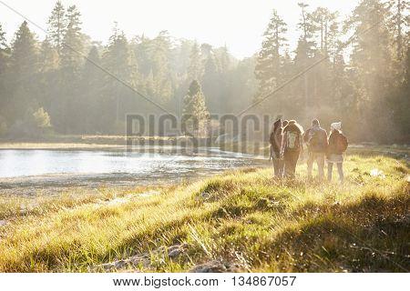 Five friends walking near a lake, distant, back view