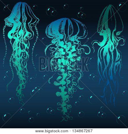 Hand Drawn Jellyfish
