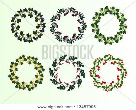 Set of berry frames - wreath. Cherry , blackberry, gooseberry, rowan berries and leaves. Vector isolated objects on white background. Round colored frame collection of garden berries.
