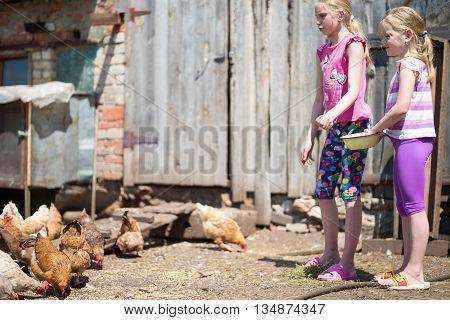 children fed chickens grain on the farm