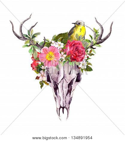 Deer animal skull with flowers and bird in boho style. Watercolor