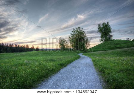 Landscape In The Evening