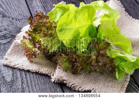 Fresh crispy lettuce and Lollo Rossa on sacking. The source of vitamins and minerals detox diet health or vegetarian food concept