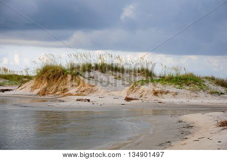 Sand dunes and sea oats along the gulf coast during an approaching storm