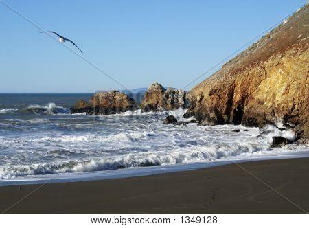a sunny day at rockaway beach