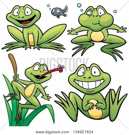 Vector illustration of Frog Set Character Cartoon