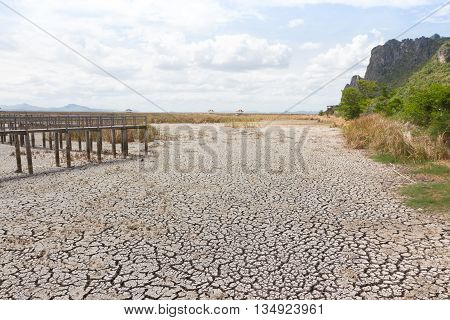 dry earth and cracked ground texture broken split land with soil background