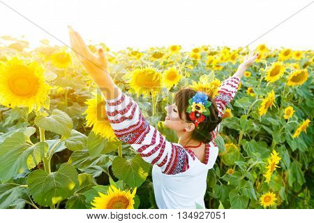 Beautiful girl in national ukrainian blouse embrodery rise hands up on a sunflower plant at sunset backlight.