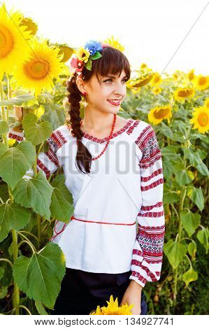 Beautiful young girl in national ukrainian blouse embrodery holding a sunflower on a plant at sunset backlight.