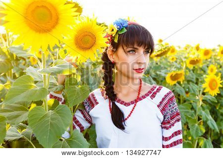 Beautiful woman in national ukrainian blouse embrodery holding a sunflower on a field at backlight