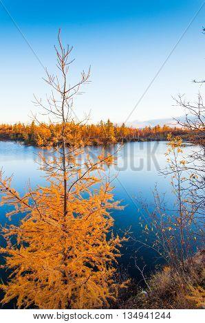 Mountain Lake In Tundra, Deep Autumn In The Taimyr Peninsula Near Norilsk.