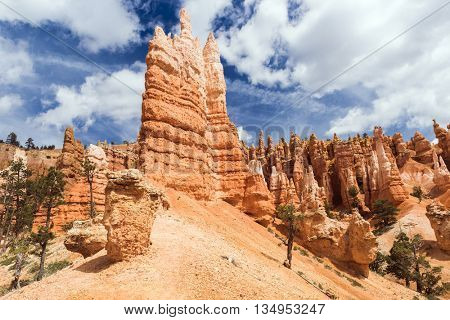 Hoodoos at Queen's Garden, Bryce Canyon National Park, Utah, USA