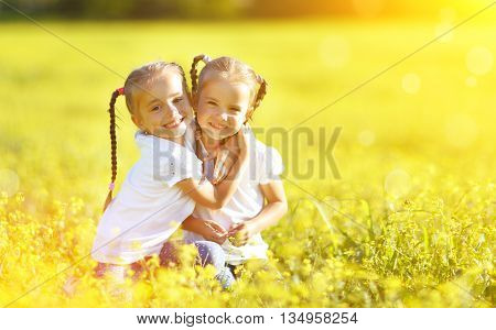 happy children twins sisters embracing in the summer on the nature