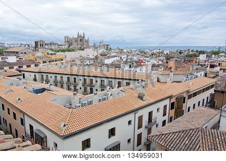 La Seu Cathedral, Rooftops And Ocean Horizon