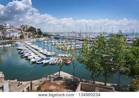 Calanova Port Olimpic
